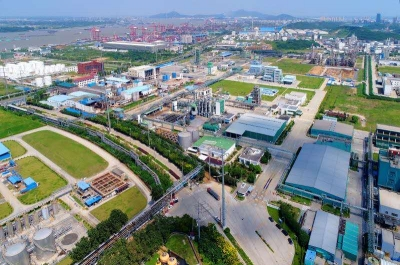 新材料产业园:政企同心勇做产业强区生力军