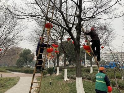 丹阳园林部门摆放小品、鲜花、悬挂灯笼喜迎春节