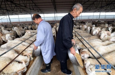 到2022年产值超千亿,江苏这样推进畜牧业绿色发展