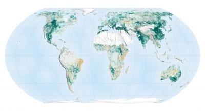 美国NASA公布的这张照片,拍到了中国的绿水青山