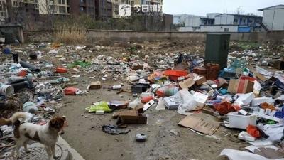 随手抛,小区身边空地成垃圾场 这事赖谁?
