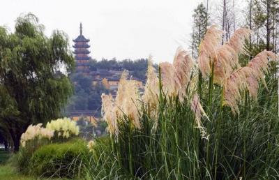 镇江五山景区妇女节前后推出旅游优惠菜单