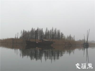 江苏省湿地资源丰富 占全省国土面积四分之一