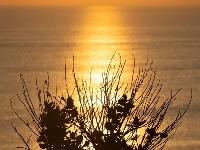 巴厘岛情人崖