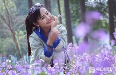 """葛仙湖二月兰进入盛花期 宛如一汪梦幻""""紫色花海"""""""
