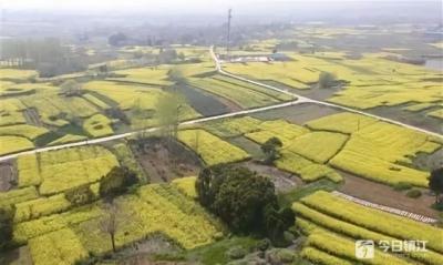"""国家全域旅游示范区创建单位迎""""大考"""" 江苏8市区即将验收"""