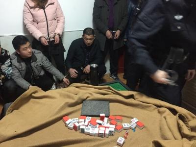 小区内聚众赌博  9人被当场抓获