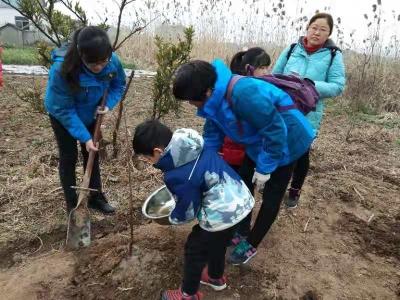 在敬老院栽下30棵树苗 志愿者承诺将每月打理