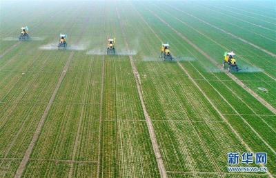 厉害了!全国农业龙头企业500强江苏数量居首