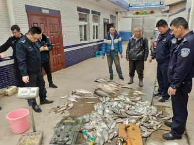 """今日凌晨,""""疯狂渔夫""""长江里一夜电捕170斤鱼儿"""