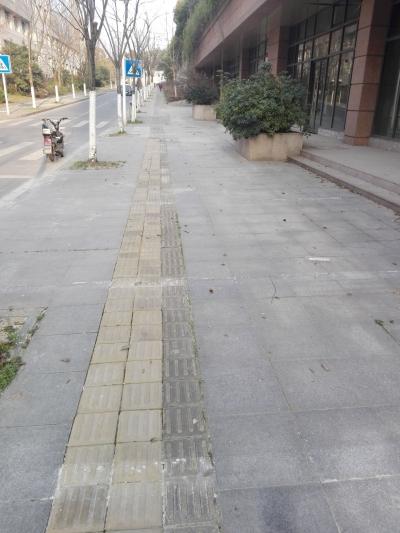 景园路人行道停车位已被清除