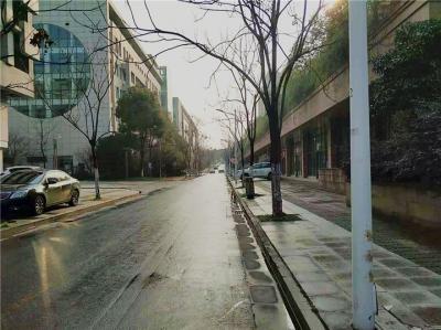 后续:景园路人行道和盲道私划停车位已经全部拆除
