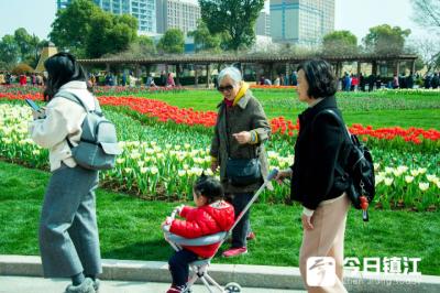"""融入自然 享受春色  市民乐将""""春花烂漫""""晒于朋友圈"""