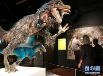 世界最大霸王龙被确认:身长13米,体重超过8吨