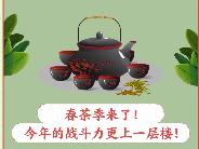 江苏春茶消费人数全国第一,多为85后、90后