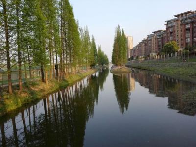 """居民口中的""""黑皮带""""变成景观河 看海绵城市改造如何""""除黑"""""""