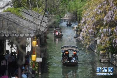 清明假日全国接待游客人次破亿 踏青赏花成出游首选
