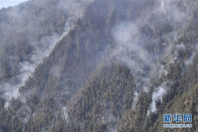 应急管理部发布一季度自然灾害情况:森林火灾造成39人死亡