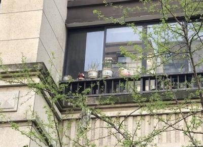 丹阳一小区住宅楼上突然掉花盆,楼下路人吓得不轻