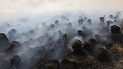 内蒙古呼伦贝尔突发俄罗斯、蒙古国入境火