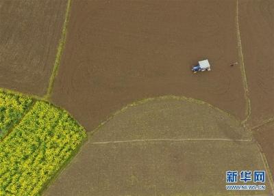 江苏城镇土地使用税最低税额调整 预计全年减税超15亿元