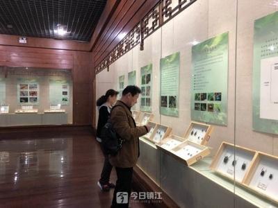 """镇江公共文化服务也将""""绩效考核"""" 做得好不好一目了然"""
