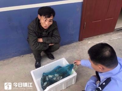 抓青蛙犯法!男子非法狩猎青蛙百余只被抓