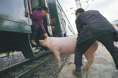 """慢火车 穿行在大凉山的扶贫""""专列"""""""