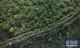 让黄土高坡披彩挂绿