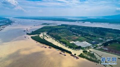 农业农村部要求聚焦关键环节确保如期实现长江禁捕