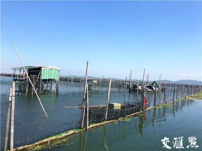 太湖4.5万亩围网清拆,通过验收了!