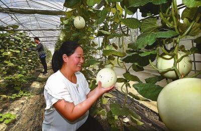 【新时代 新作为 新篇章】江苏阜宁高质量推进江淮生态经济先行区建设