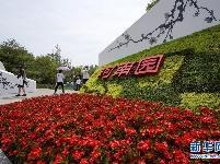 生态中国·大河之南聚万象