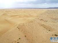 草方格扎出的沙漠绿意