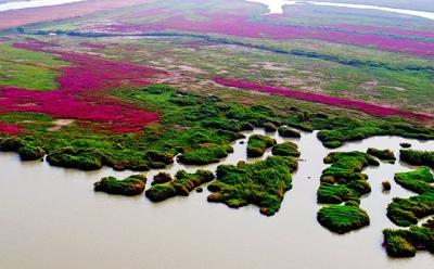 江苏公布首批河湖生态水位,这些河湖入选