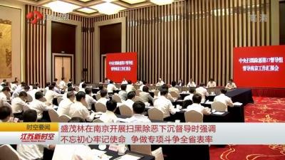 盛茂林在南京开展扫黑除恶下沉督导时强调 不忘初心牢记使命 争做专项斗争全省表率