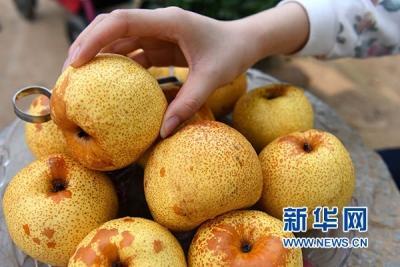 智利产梨将首次进入中国市场