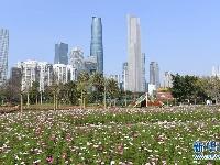生态中国·城中湿地谱粤章