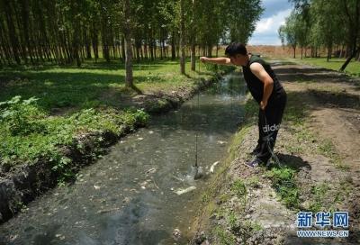 """基本消除黑臭水体、生活污水直排口……江苏城镇污水处理进入""""提质增效""""时代"""