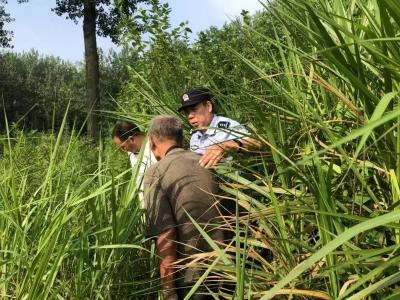 丛林中迷路三天三夜,民警成功救出高龄老人