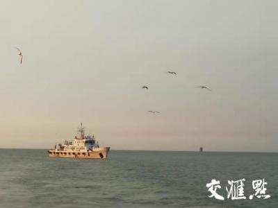 江苏首次实行限额捕捞制度!8月1日3000艘渔船将出海开捕