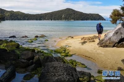 新西兰开征外国游客税