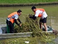 整治河段垃圾 携手共迎创卫