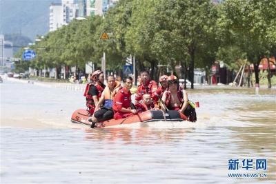 """台风""""利奇马""""致6省市651万人受灾"""