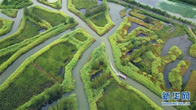 长江经济带120处国家级自然保护区评估结果出炉 江苏两处入围前十