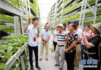 今年底镇江将建成15个高效生态农业示范基地