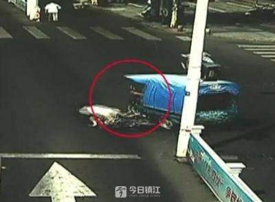 电动车肇事后跑了!镇江京口交警4个月查处14起,拘留7人