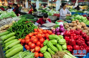 江苏各地创新蔬菜产业发展模式,着力培育千亿元优势特色农业产业