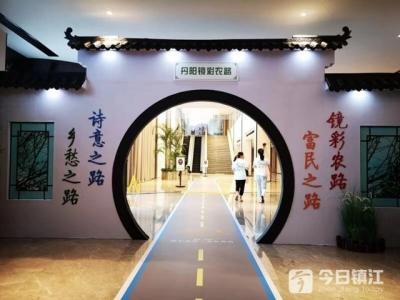 """51公里环线让沿路""""美如画"""" 丹阳打造农村公路品牌"""