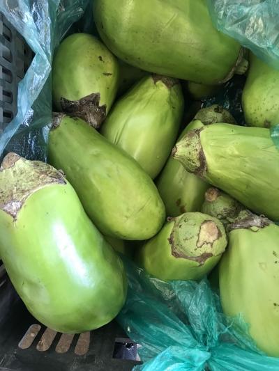 本月中旬起地产蔬菜供应或将明显减少